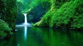 দিন দুনিয়ার মালিক তুমি.. Islamic song Bangla