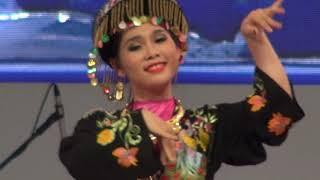 베트남 전통무용2, 하노이공연단, SEOUL FRIEN…