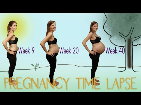 fdc09a65d6af23 Watch this belly GROW! Daily photo + some creativity = Unique pregnancy  transformation time lapse