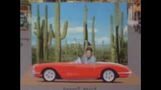 Brian Wilson-Desert Drive