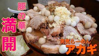 【大食い】とろける豚満開の一杯 男気らーめんアカギ【デカ盛り】 thumbnail