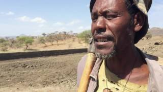 Ethiopia drought - Water harvesting