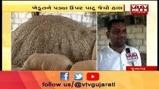 Junagadh: Visavadar તાલુકામાં કેટલાક ખેડૂતો ઓનલાઈન રજીસ્ટ્રેશન ન થતાં મુશ્કેલીમાં મુકાયા | Vtv