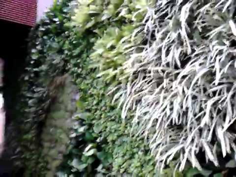 Jardines verticales samuel