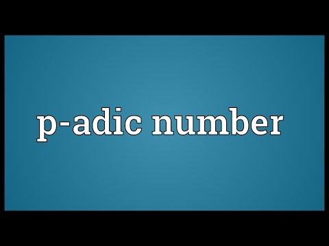Header of P-adic number