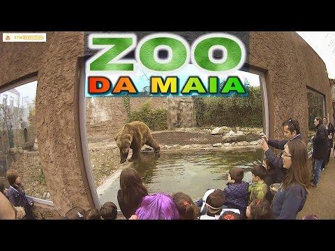 Zoo da Maia - Respeitem os Animais. Animais são nossos amigos. Jardim Zoológico Maia #ktmlaranjinha
