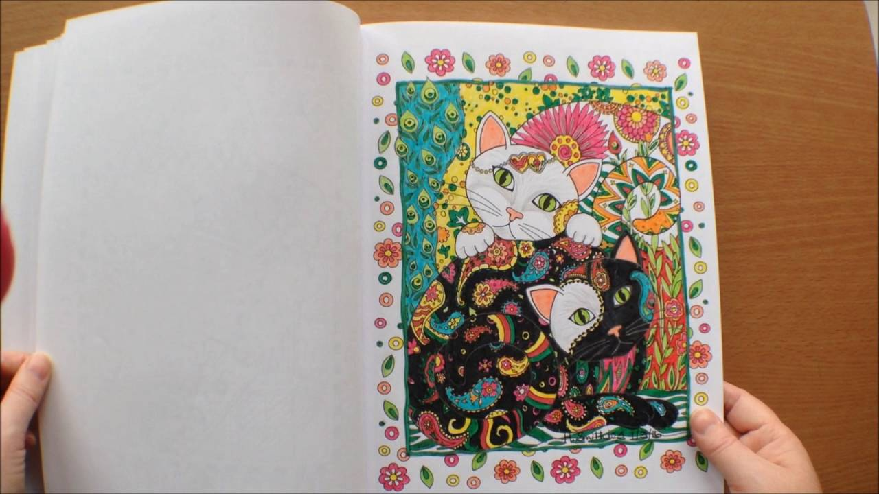 Creative Cats by Marjorie Sarnat Colouring Book Flipthrough with ...