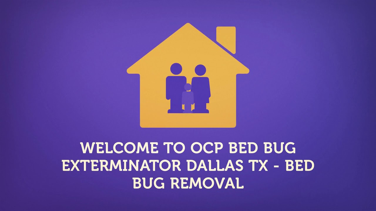 Bed Bug Exterminator In Dallas TX