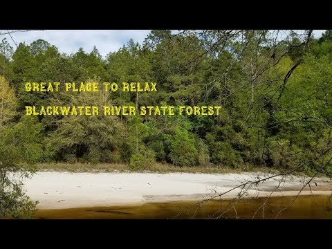 Van Life/Black Water State Forest