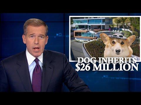 BREAKING NEWS: Dog Inherits Millions