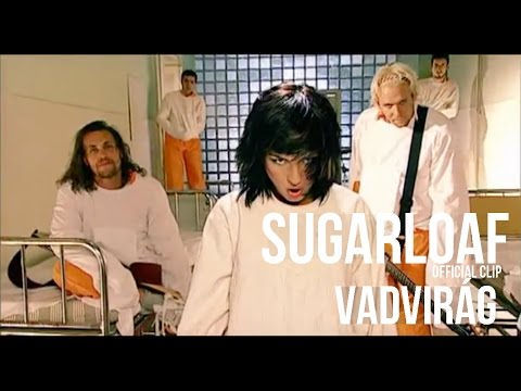 Sugarloaf - Vadvirág (HQ) official video