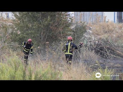 VÍDEO: Un incendio quema 3.000 metros cuadrados de matorral y cañaveral junto al río Lucena