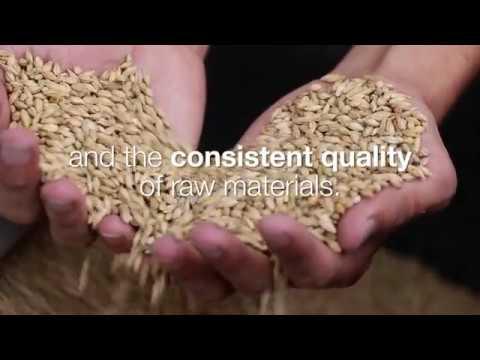 IoT in Grain Storage