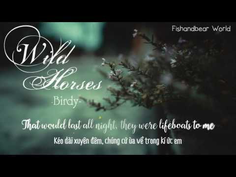 [Lyrics+Vietsub] Wild Horses - Birdy