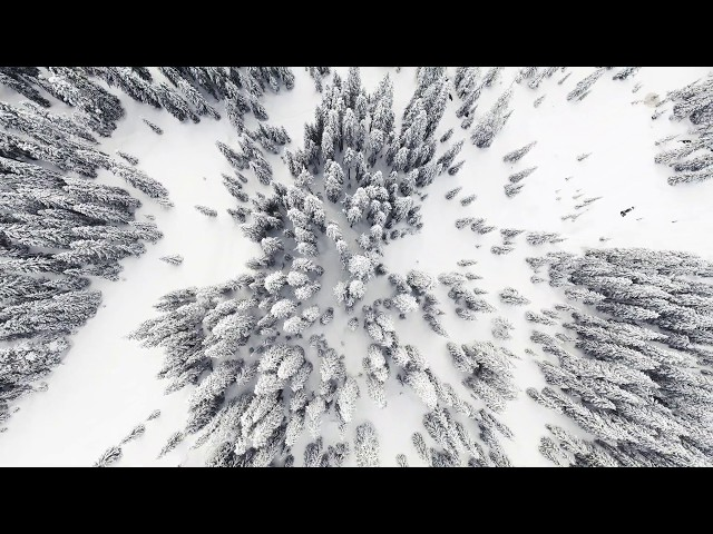 PUTV VISUALS // Aerial Snowshoe Adventure 4K (Source Lake Washington)