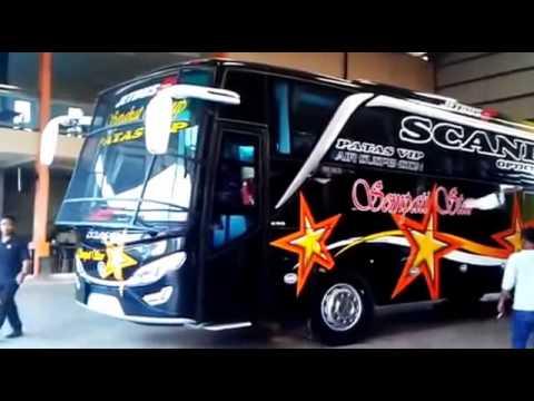 Bis Mania Aceh Sempati Star