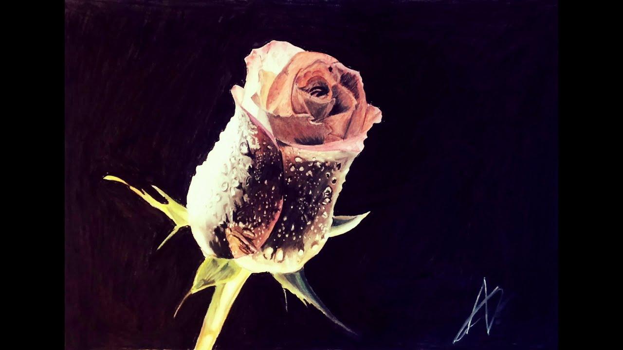 Dibujo Rosa realista sobre fondo negro \