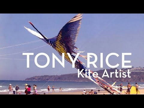Tony Rice | Kite Artist @ Museum of Brisbane