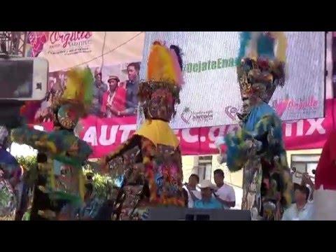 Concurso Chinelos -Adultos Yautepec 2016
