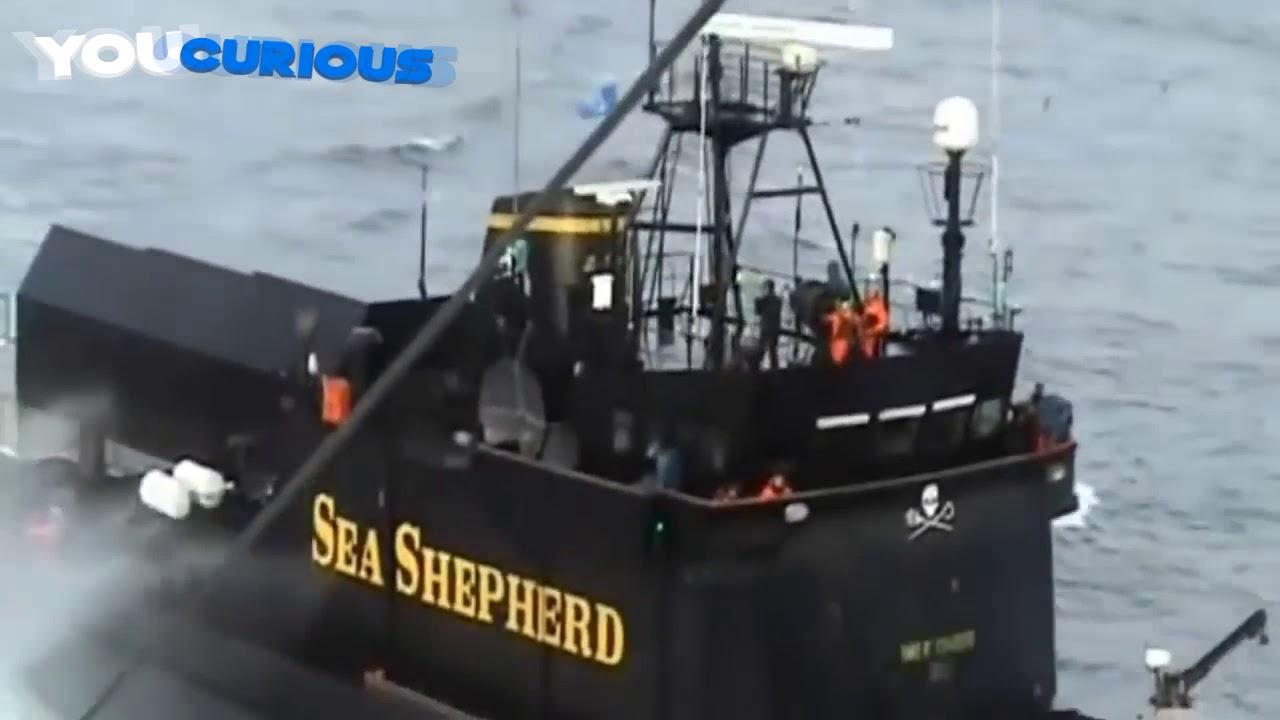 Somali Pirates VS Ship's Private Security Guards