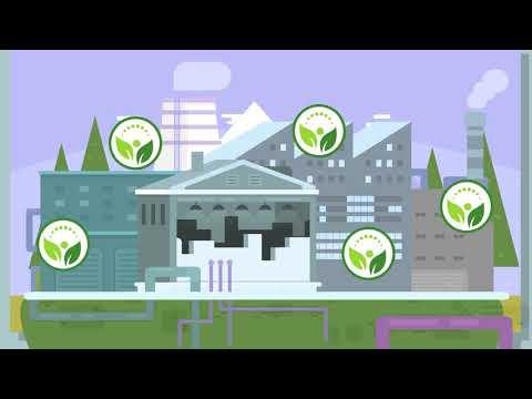 О сдаче экологической отчетности с использованием Личного Кабинета природопользователя
