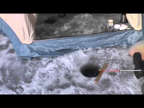 зимняя рыбалка сига на увильдах