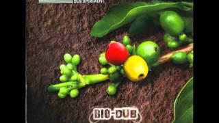 Pachamama Dub - Moonlight Dub Xperiment