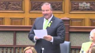 Liberals Lyme 'action plan' all talk, no action: NDP MPP Mantha