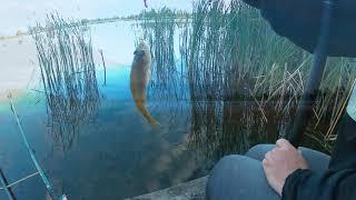 Рыбалка на Даниловком озере с ночёвкой Радиосвязь на КВ QRP FT 817 Укороченный вертикал 2019г