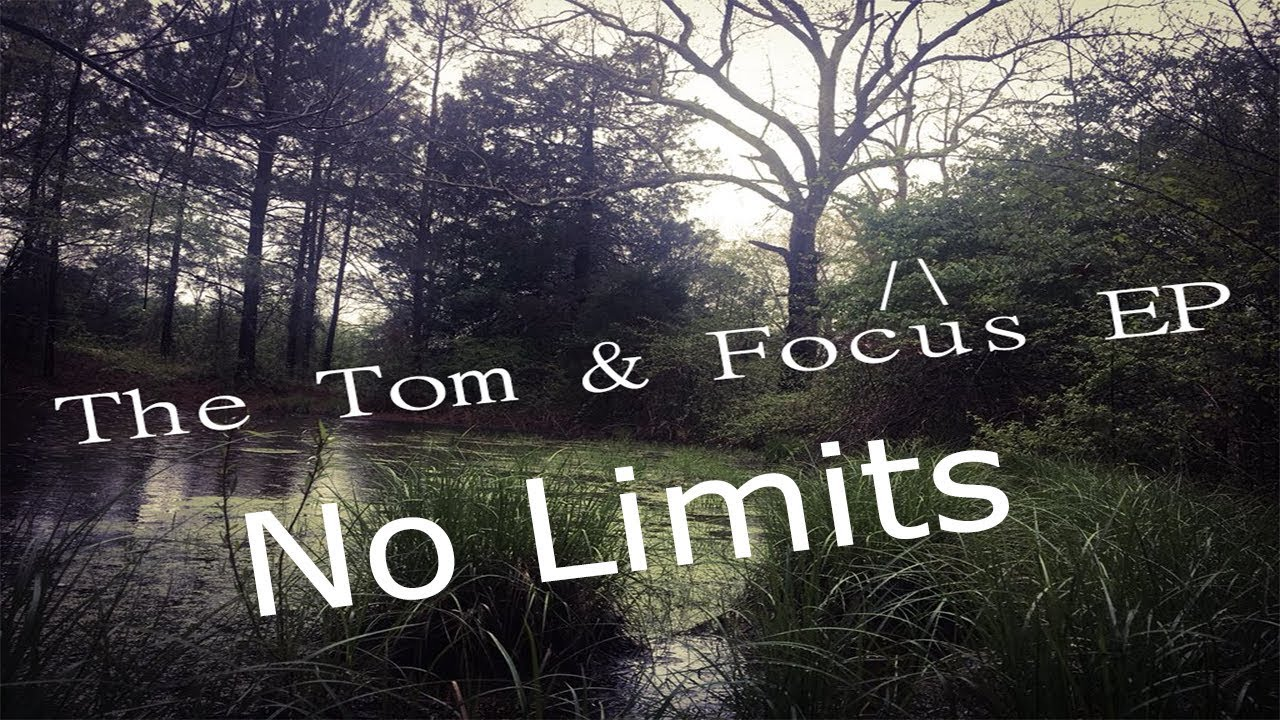 sabio tom focus areas - 1280×720