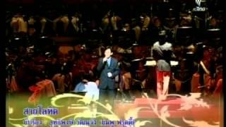 เพลงสายโลหิต   โดย  ชมพู ฟรุตตี้