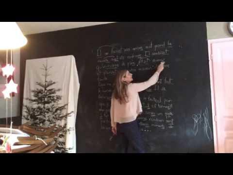 """Français - Correction de la dictée 12 """" Mon bel oranger """" . Moma school - Apprendre le français"""