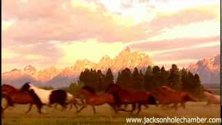 Jackson Hole: Summer & Fall from Wyoming Office of Tourism.