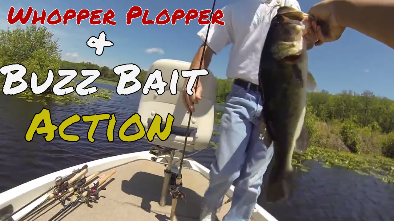 Bass fishing columbus ms youtube for Mississippi out of state fishing license