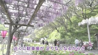 藤枝市プロモーション映像「ふふふ ふじえだ」