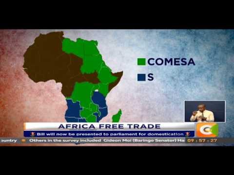 Cabinet ratifies Africa Free Trade Area treaty