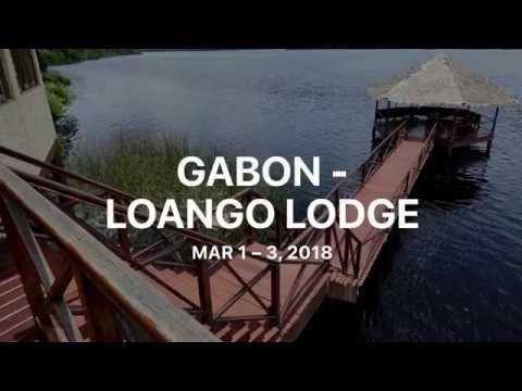 Gabon -  Loango Lodge