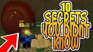 12 DUNGEON QUEST SECRETS YOU DIDN'T KNOW!!! (Roblox)