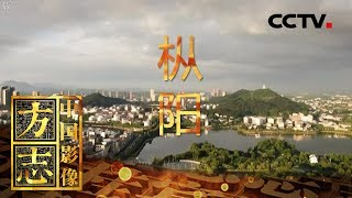 《中国影像方志》 第386集 安徽枞阳篇| CCTV科教