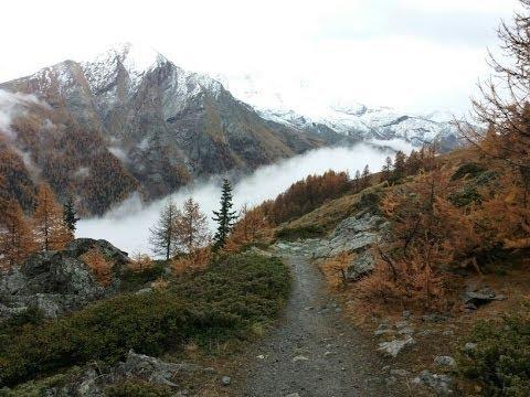Foreste d'Italia_parte seconda DOCUMENTARIO ISPRA
