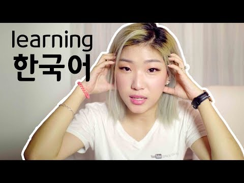 HOW I LEARNED KOREAN filmed in Korean (my Korean language story)