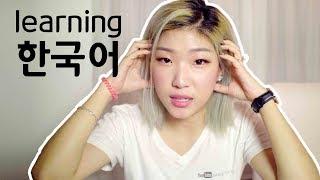HOW I LEARNED KOREAN filmed in Korean (my Korean language story)