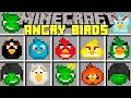 Minecraft ANGRY BIRDS MOD l ANGRY BIRDS VS EVIL PIGS! l Modded Mini-Game