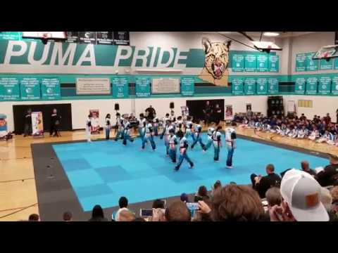 Martial Arts Mania 2019 | Park Crest Middle School | Champions