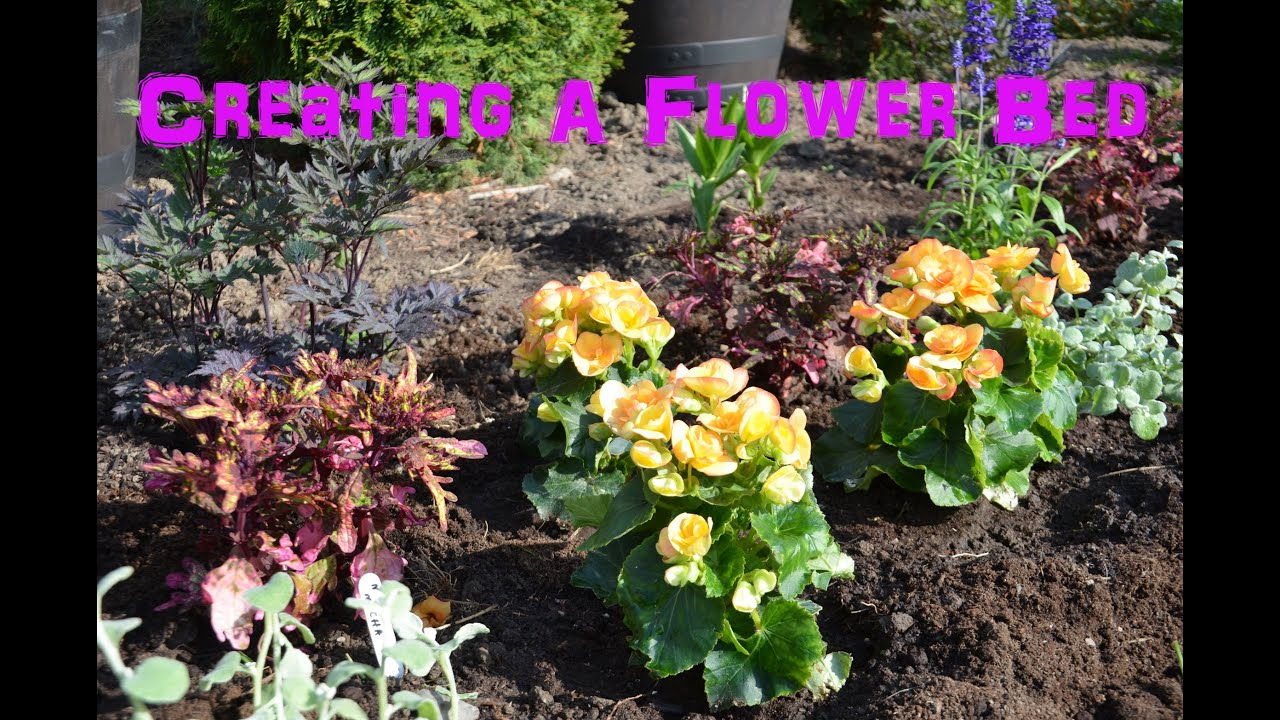 Creating A Flower Bed With Annuals Youtube