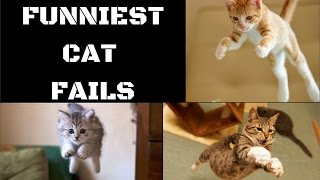 Funniest Cat Fails  - New Compilation | Vol #3 | Hilarious Cat and Kitten's Video