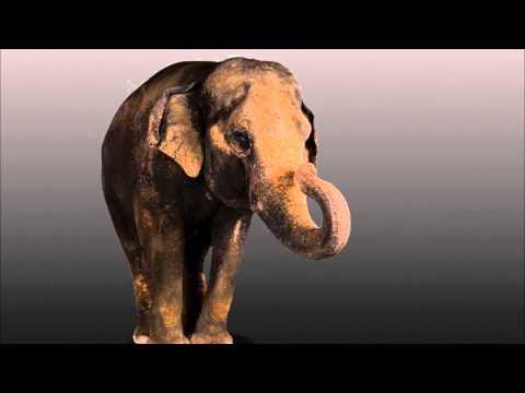 Death Penalty: Thomas Edison Electrocutes an Elephant