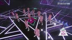 创造101《Pick Me》PRODUCE101 CHINA theme song stage edition