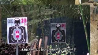 アーリーの弾道動画 東京マルイ HK416c in サバス