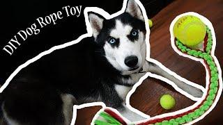 DIY Dog Rope Toy